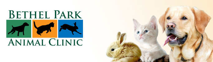 Bethel Park Animal Clinic Banner